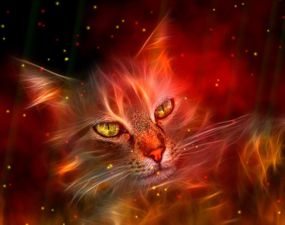 Windows 7 Fire Element Animated Wallpaper 1.0 full