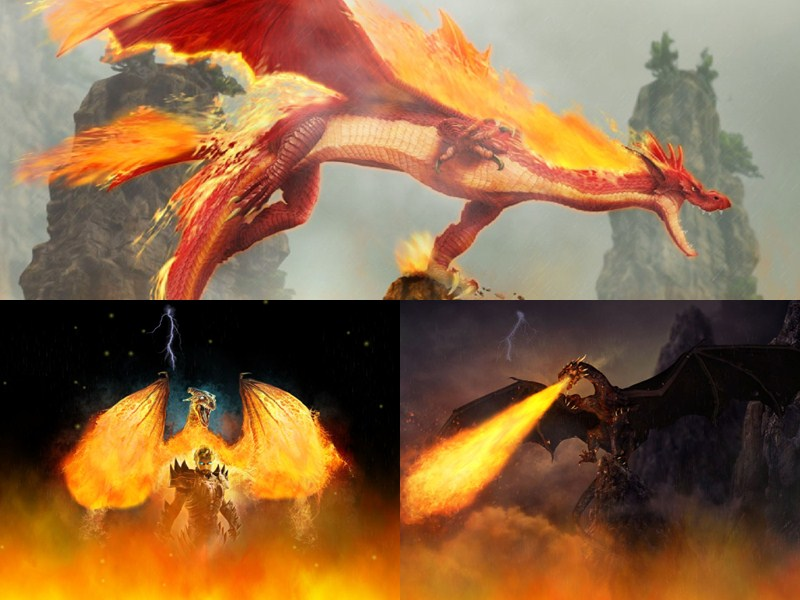 Fire Dragon Animated Wallpaper