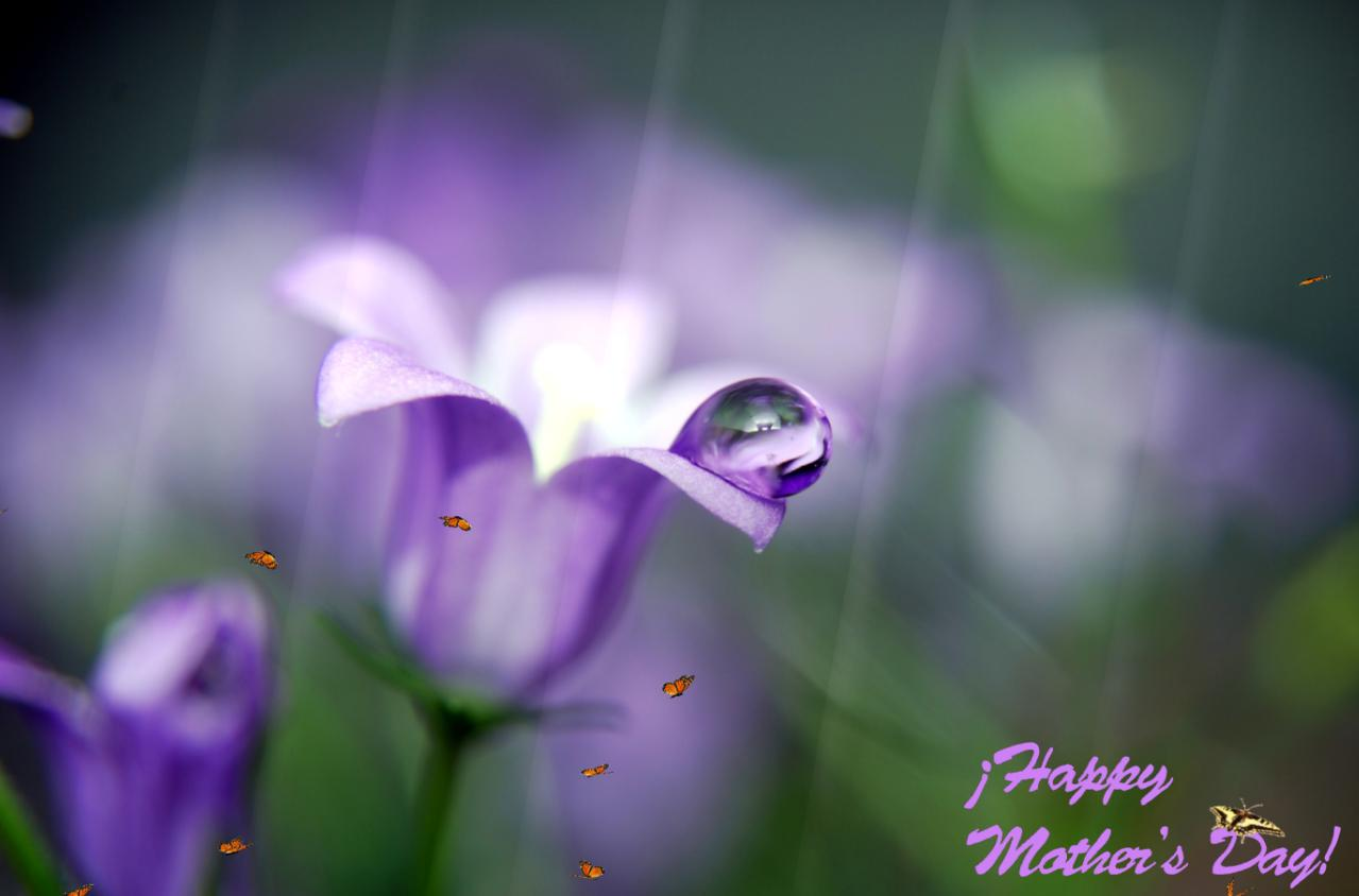 Download Happy Mothers Day Animated Wallpaper