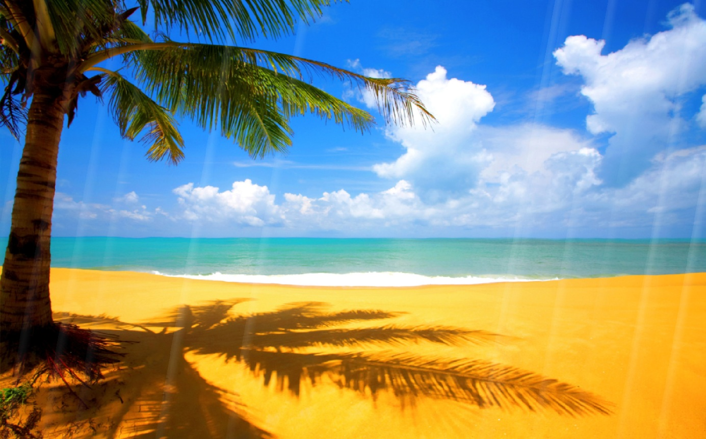 Download now summer beach animated wallpaper