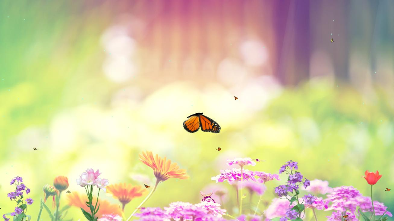 Download Butterfly Paradise Animated Wallpaper