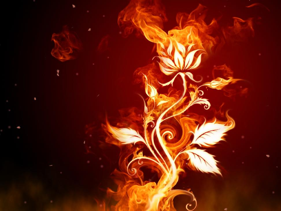 free animated wallpaper windows 8 | Fire Hands Animated Wallpaper ...