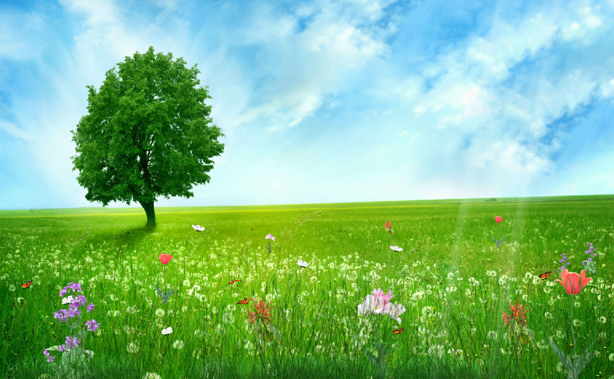 happy spring animated wallpaper desktopanimated com