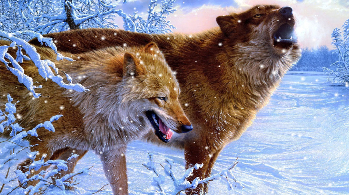 Howling Wolves Animated Wallpaper