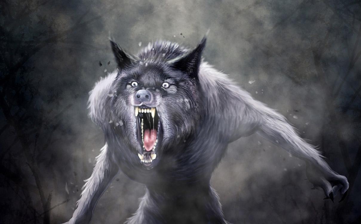 Werewolf Anime Werewolf Animated Wallpaper