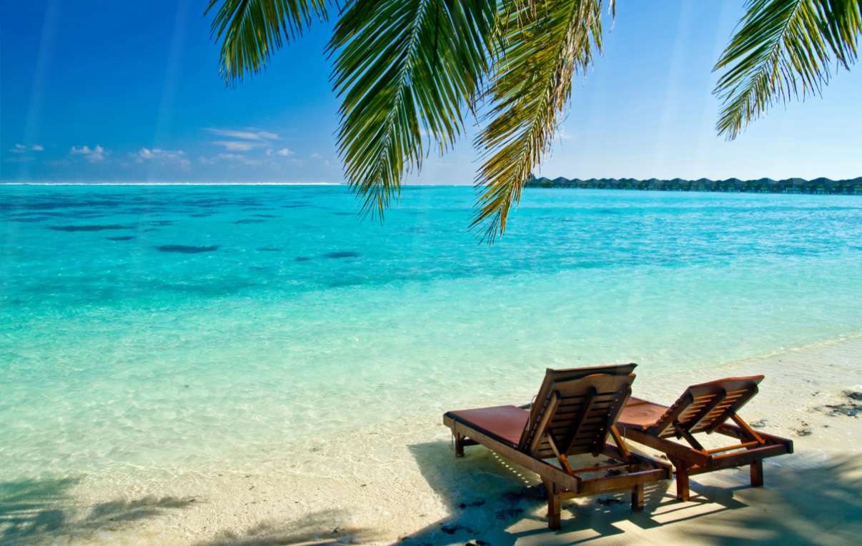 Four Seasons Animated Wallpaper Tropical Beach