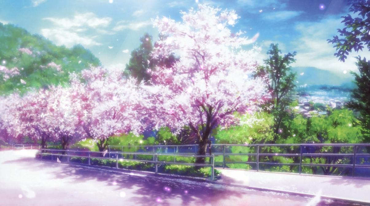 Cherry Blossoms Animated Wallpaper Desktopanimated Com
